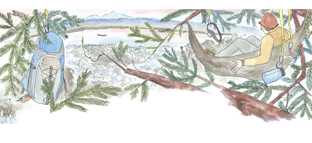 Editorial illustrations for Bay Nature magazine (April-June 2014), accompanying Leath Tonino's article on tree camping in San Francisco