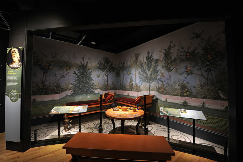 Livia Drusilla corner, <em>Our Global Kitchen</em> © AMNH