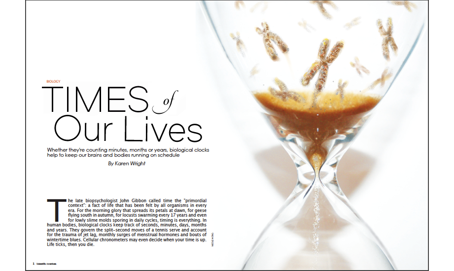 <em>Scientific American</em>-style conceptual spread, digital